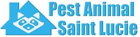 Saint Lucie Wildlife and Animal Removal